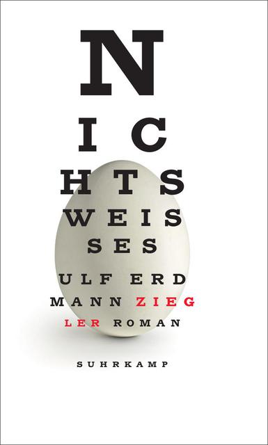 Ulf Erdmann Ziegler - Nichts Weisses Buch-Kritik