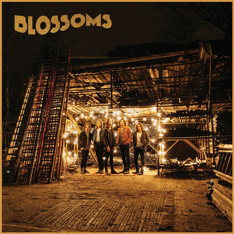 Blossoms - Blossoms CD-Kritik