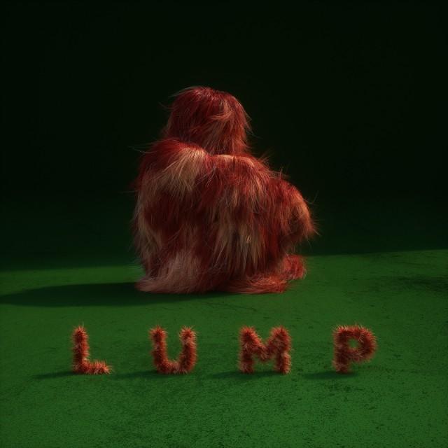 Lump Cover