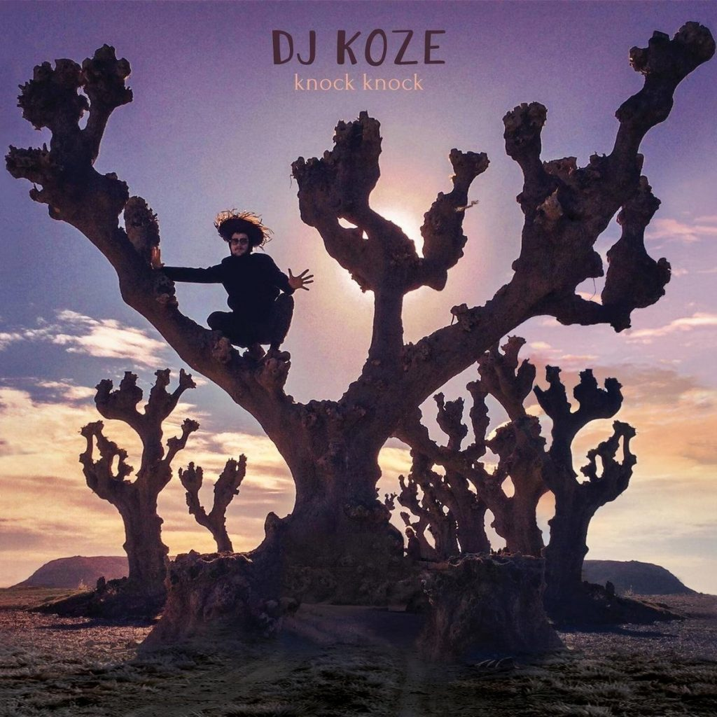 Dj Koze - Knock Knock Cover
