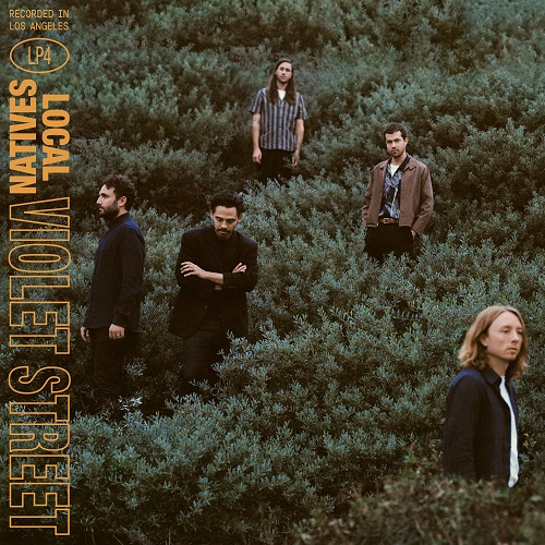 Local Natives - Violet Street Cover