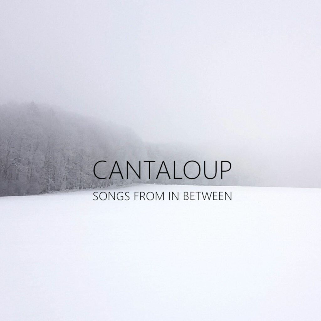 Cantaloup - Songs From In Between COVER