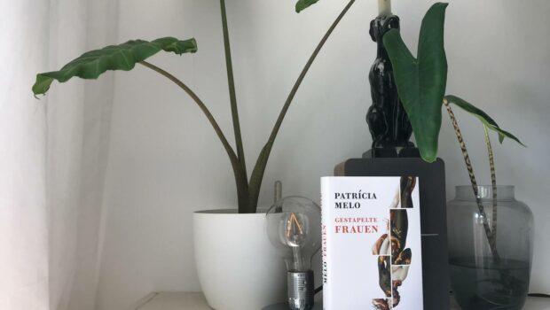Patricia Melo - Gestapelte Frauen