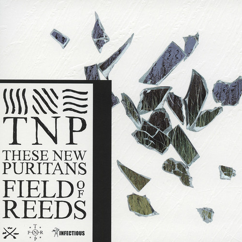 These New Puritans - Field Of Reeds CD-Kritik